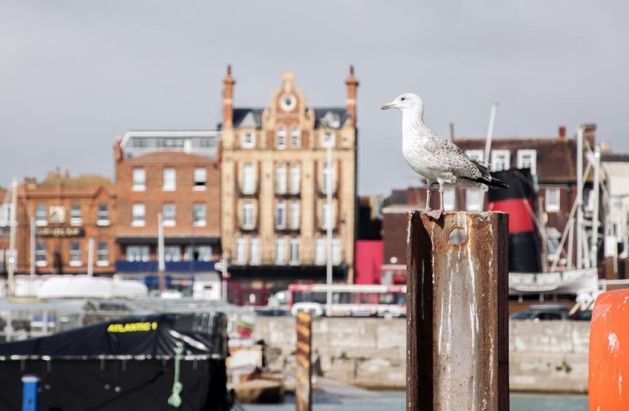 English port of Ramsgate harbor.