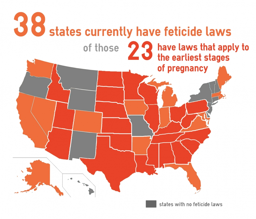 Feticide map of USA