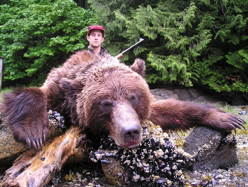 A grizzly killed by a trophy hunter in the Great Bear Rainforest.