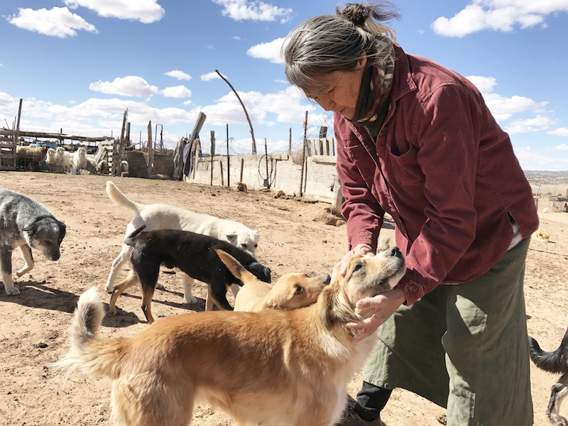 Navajo women fight to save traditions as droughts intensify