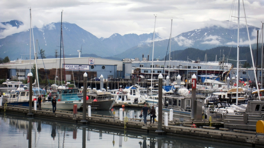 "A business on the edge of a dock says ""Icicle Seafoods."" Ships are docked nearby."