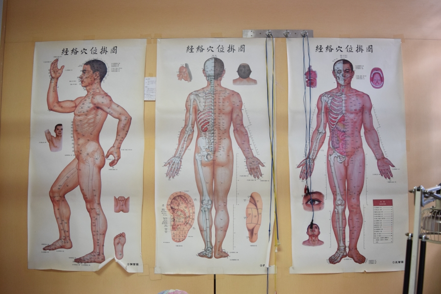 3 Maos if the human body hanging on a wall