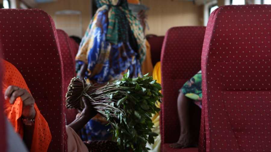 A bundle of khat on the train from Addis Ababa to Djibouti City.
