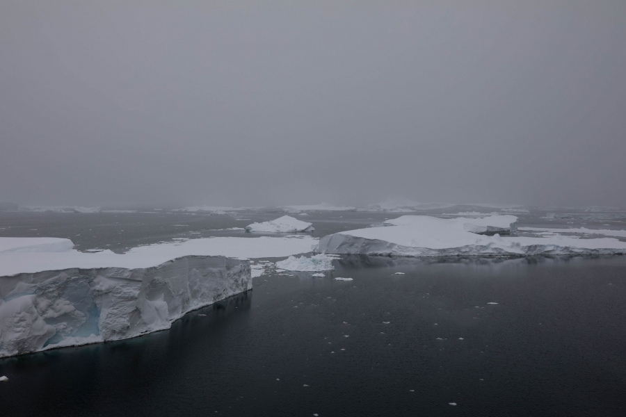 Sea ice and icebergs are shown broken off of Thwaites and blown westward.