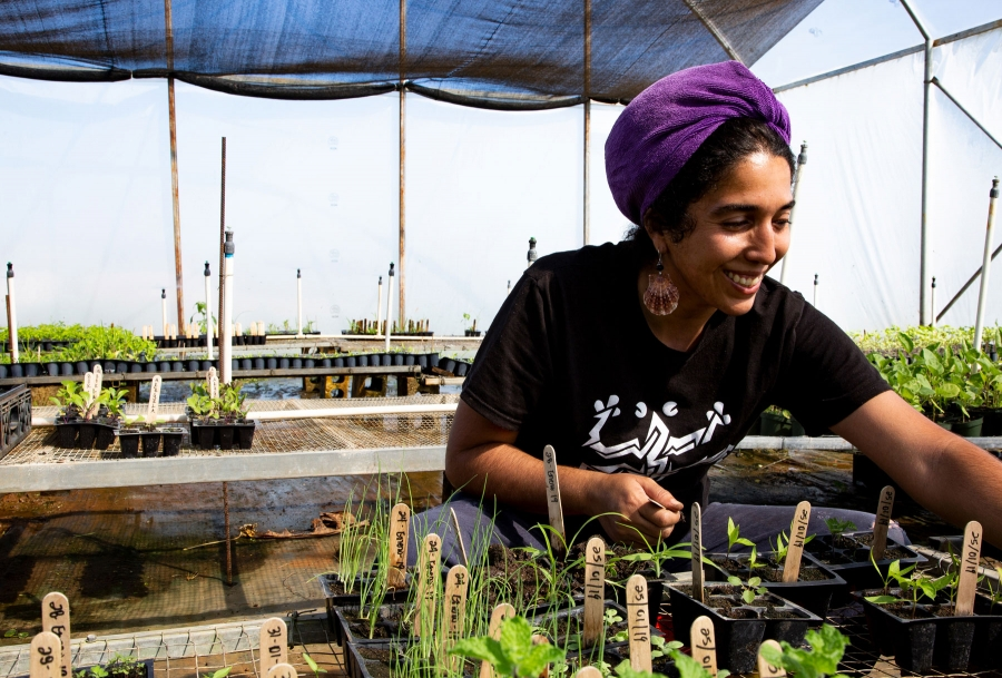Alexandra Robles is shown in a black shirt leaning over a table transplants seedlings in the greenhouse.