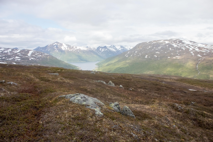 The desolate mountains of northern Norway have supported countless generations of Sámi reindeer herders. Climate change is making that more difficult, and now plans for wind power development in the area could further jeopardize the livelihoods of some Sa