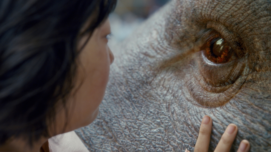 The movie's protagonist Mija forms a deep bond with her giant pet Okja.