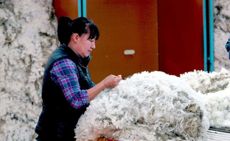 A woman in a vest and flannel shirt sorts sheep wool.