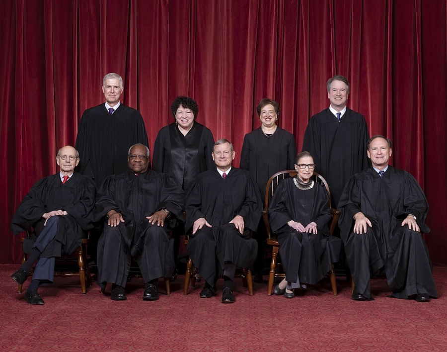Members of the Supreme Court lined up for a portrait.