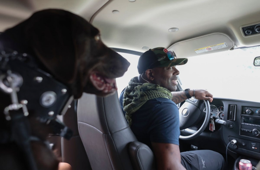 A service dog rides with a veteran on his way to a PTSD support group