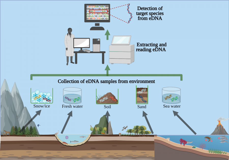 Scientists now can detect DNA traces from many different environments.