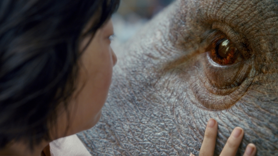 The movie's protagonist Mija forms a deep bond with her giant pet Okja.