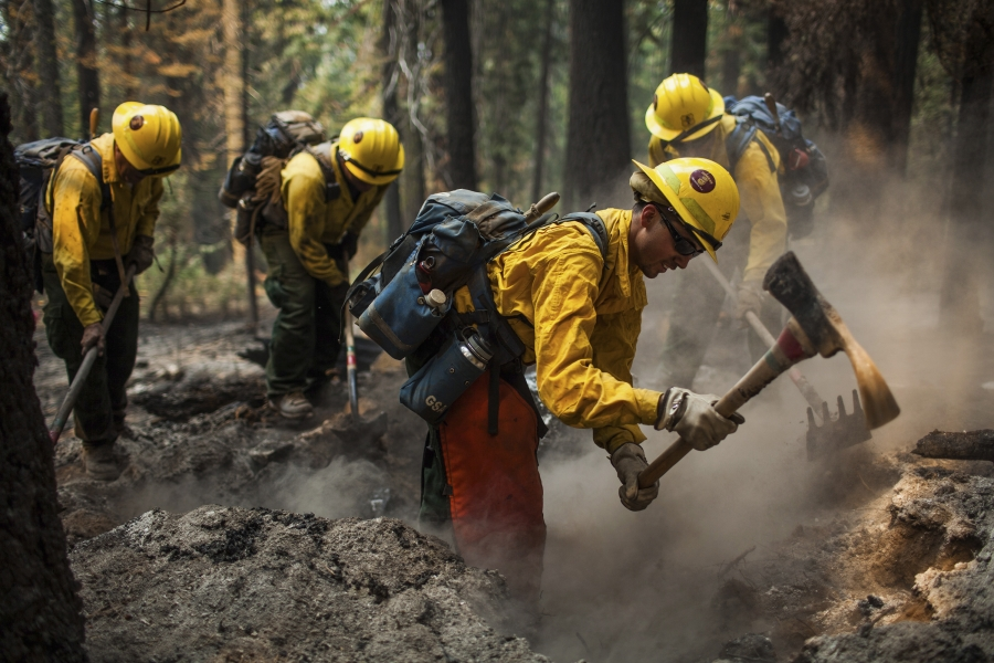 Firefighters from the Sequoia National Forest Cobra 4 hand crew mop up a spot fire