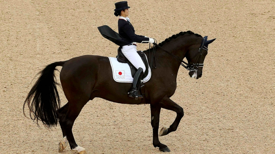 The Ancient Military Origins Of Olympic Dressage Public