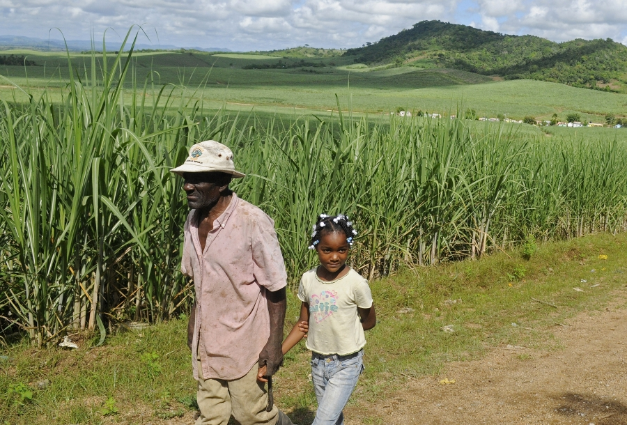 Leguisie Louis (L), a farmer, was born in Haiti but moved to the Dominican Republic in 1959. He's seen here walking with his granddaughter, Maxileidy. A  court ruling retroactively denies Dominican nationality to anyone born after 1929 who does not have a