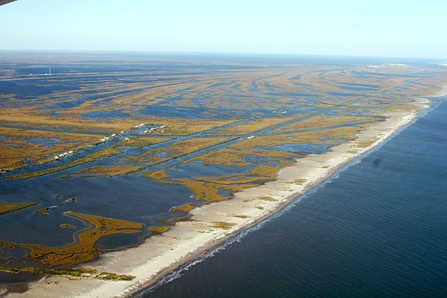 Louisiana coastline