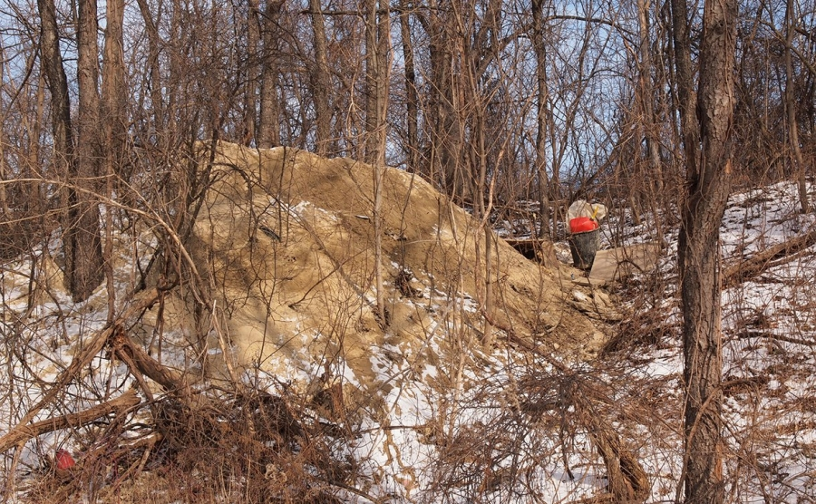 A dirt pile that drew the attention of a Canadian Conservation Officer to discover the find.