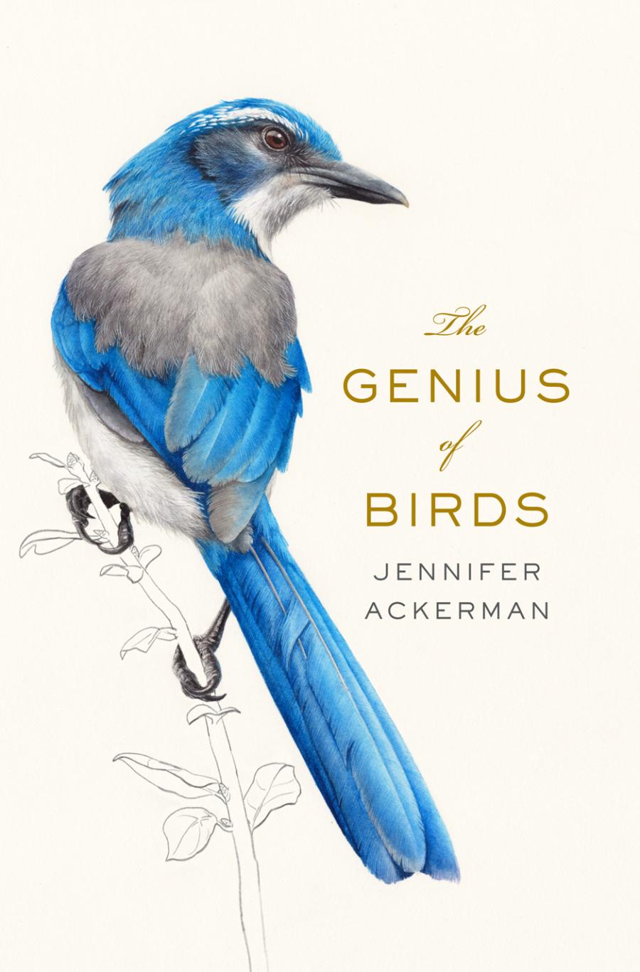 The Genius of Birds cover