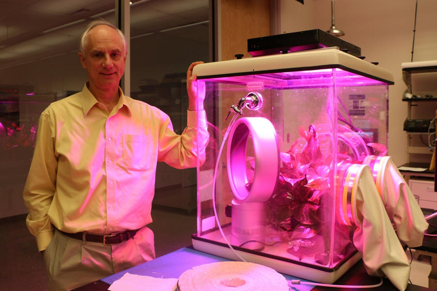 """Physicist Klaus Lackner stands beside a miniature greenhouse in his lab at ASU's Center for Negative Carbon Emissions, in which he's testing out the properties of his """"artificial tree. Lackner says he expects a square mile of artificial trees could suck as much as ten million tons of CO2 a year out of the atmosphere.(PRI/Ari Daniel)"""