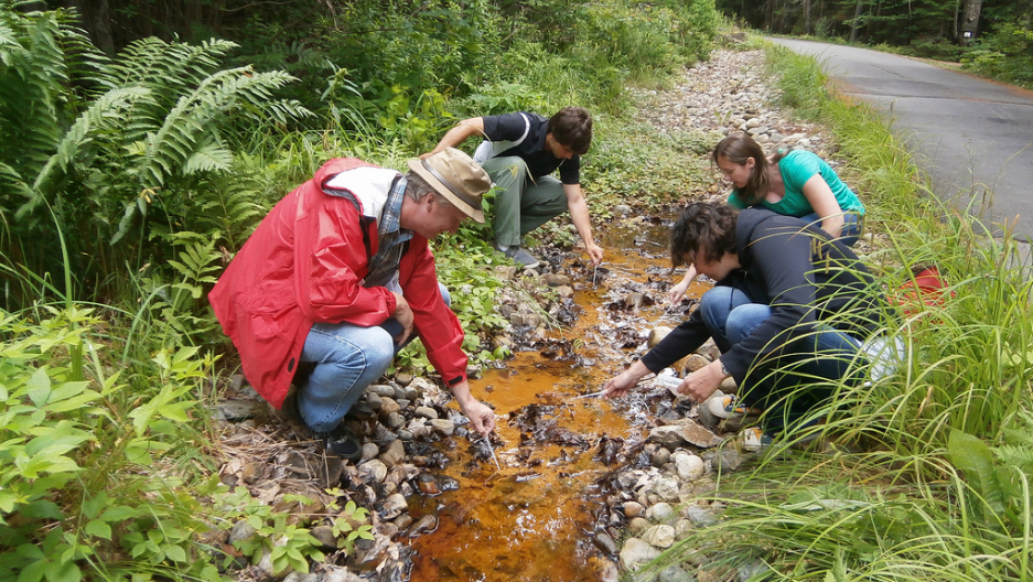 David Emerson and microbiologists sampling iron-oxidizing bacteria (Photo: Ari Daniel)