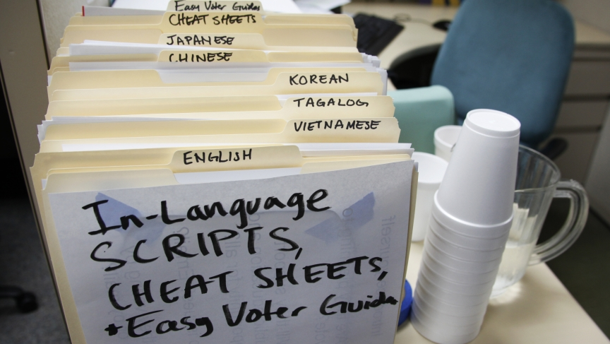 Asian American Voters_1