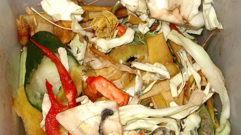 Bin of food waste