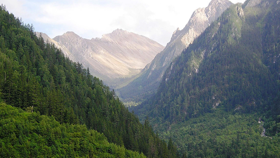 Forest recovery was seen particularly in mountain regions, including the Min Mountains pictured here, and in areas that had previously been cut down by logging companies. (Photo: Andrés Viña)
