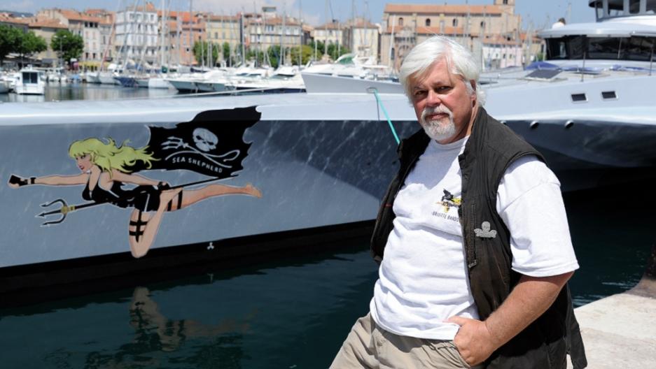 Paul Watson, Sea Shepherd founder, skips bail in Germany