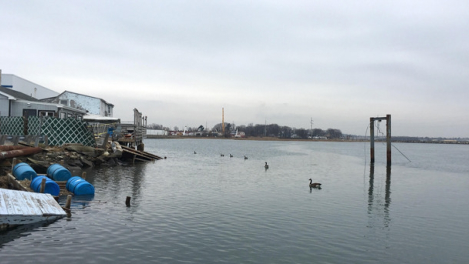 The Rumney Marsh, a haven to both birds and fish, sits in a highly industrial area north of Boston. For decades, the marsh's welfare has been in jeopardy due to its close proximity to an incinerator.