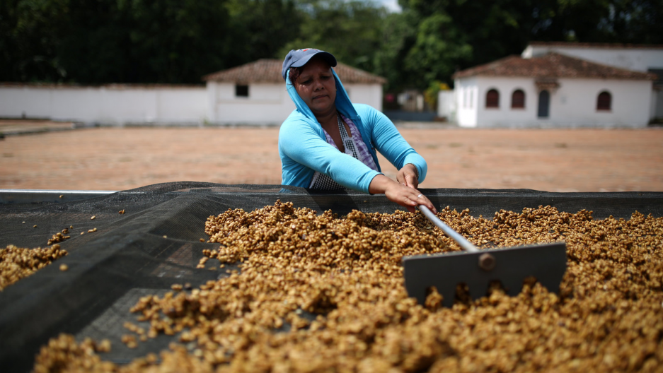 A woman rakes coffee beans in El Salvador.