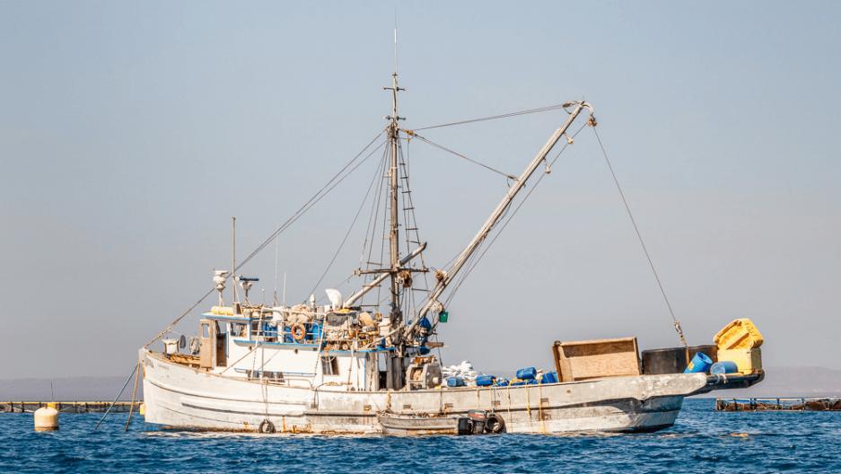 un barco de pesca en el mar de cortez en Mexico