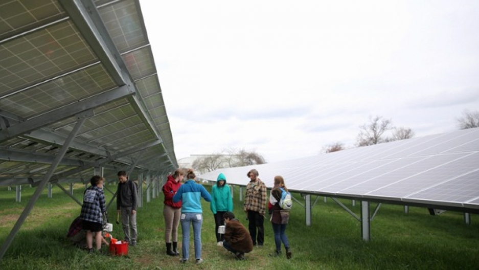Hampshire solar power