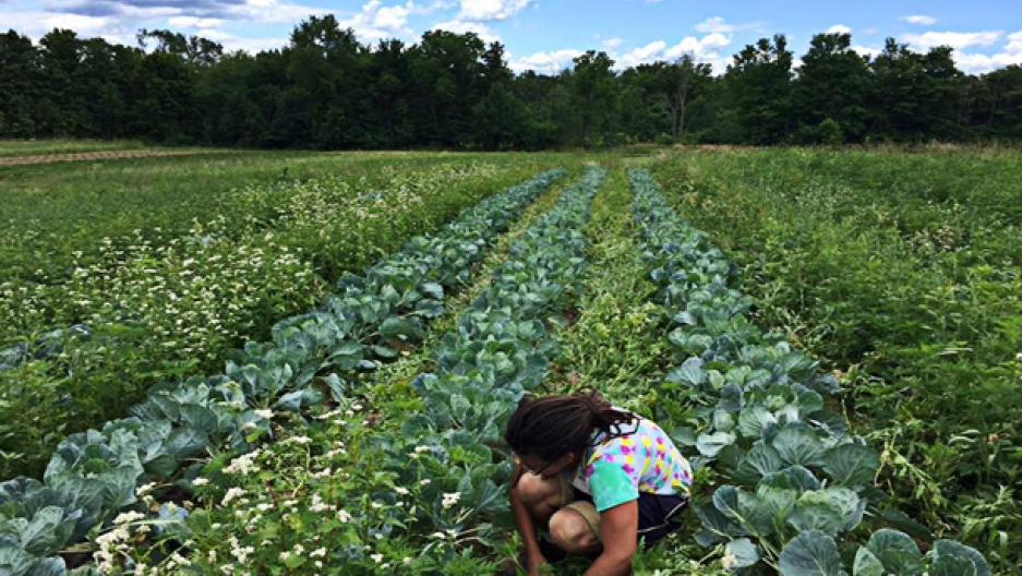 Farming in PA