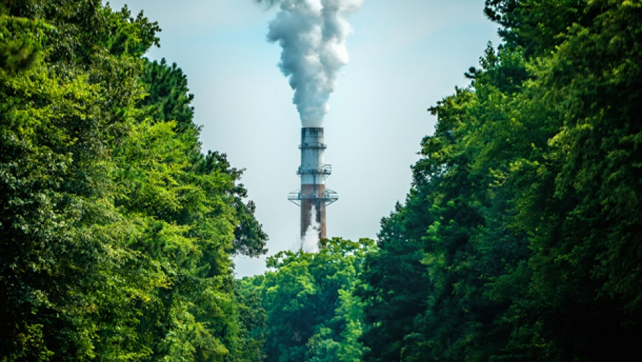 Smokestack and trees