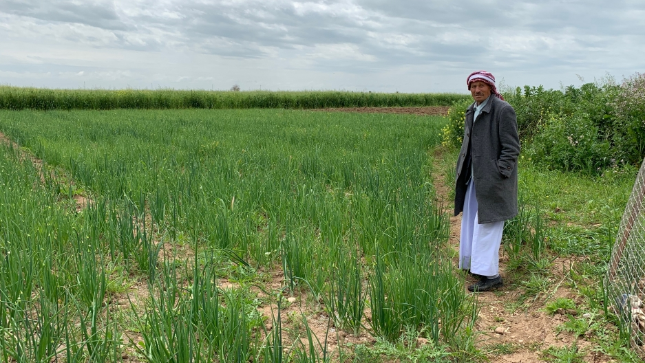 A Yazidi man stands by a field of green on a sunny day.