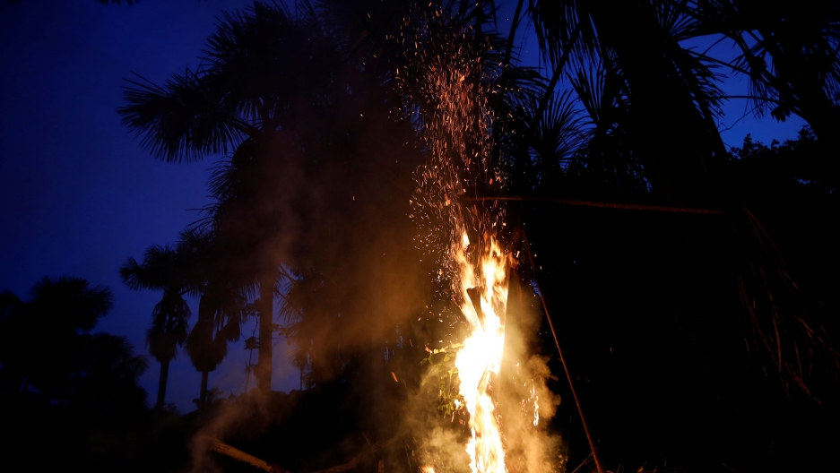Fire licks up a palm tree at night