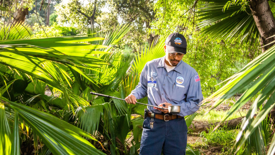 Steven Gallegos, a vector control specialist with the San Gabriel Valley Mosquito & Vector Control District, inspects a water sample at a park in Covina, California, to check for mosquito larvae.