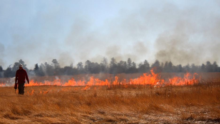 Prescribed burning in Arizona