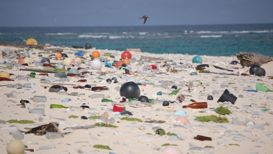 Plastic beach pollution