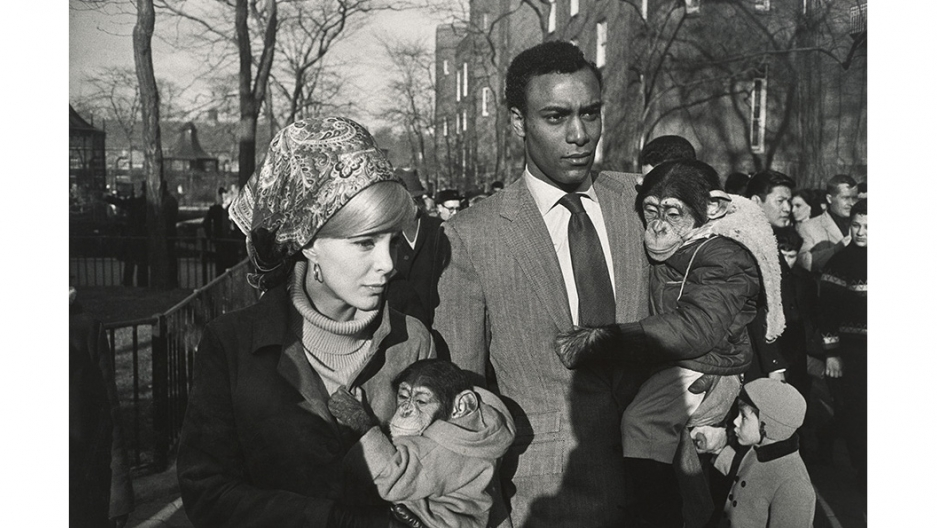 "Garry Winogrand, ""Central Park Zoo."""