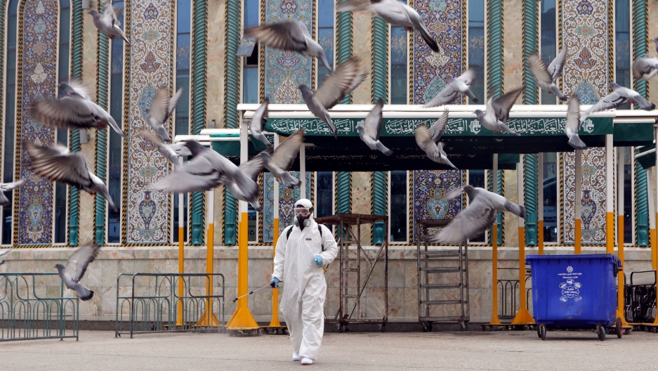A man is shown wearing a full body protective suit, spraying disinfectant as pigeons fly away.