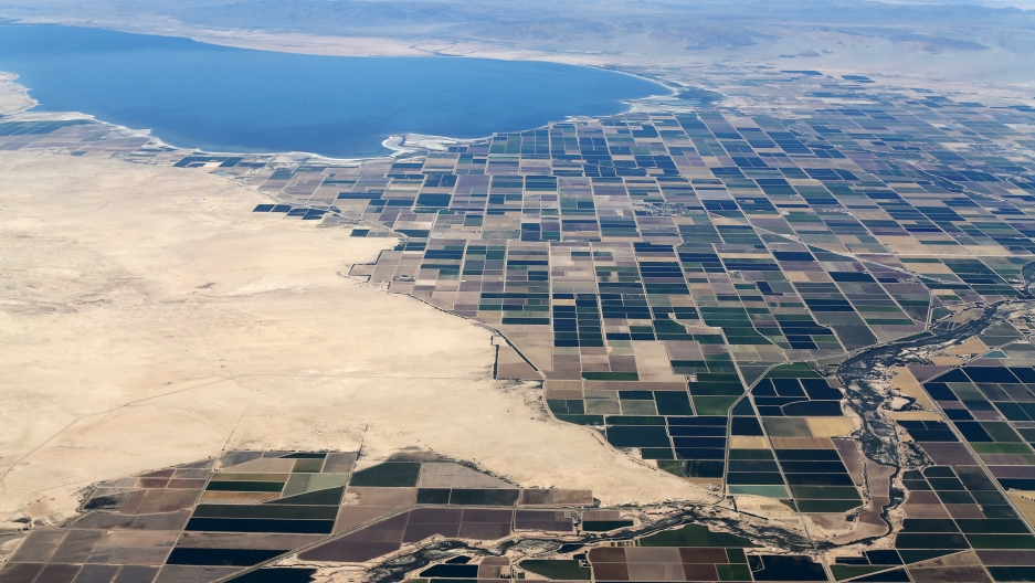 Agricultural farm land is shown near the Salton Sea and the town of Calipatria in California, May 31, 2015. California is enduring its worst drought on record.