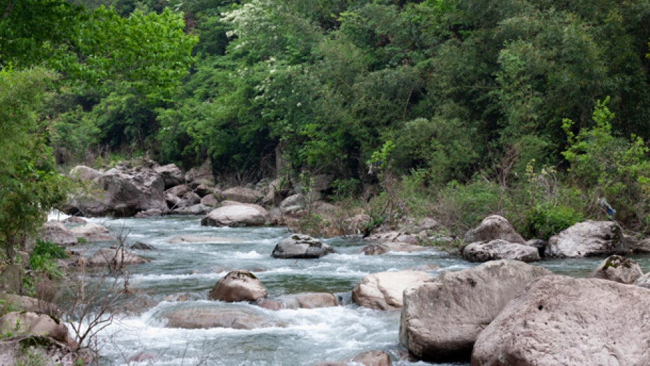 Tianmushan, China Joy in water
