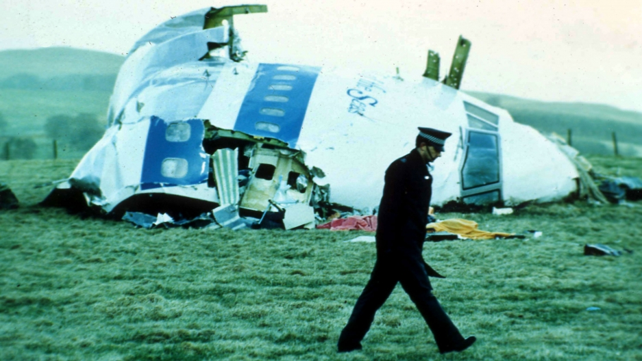 A police officer is shown walking on a grassy meadow with the wreckage of a large white aircraft in the background.
