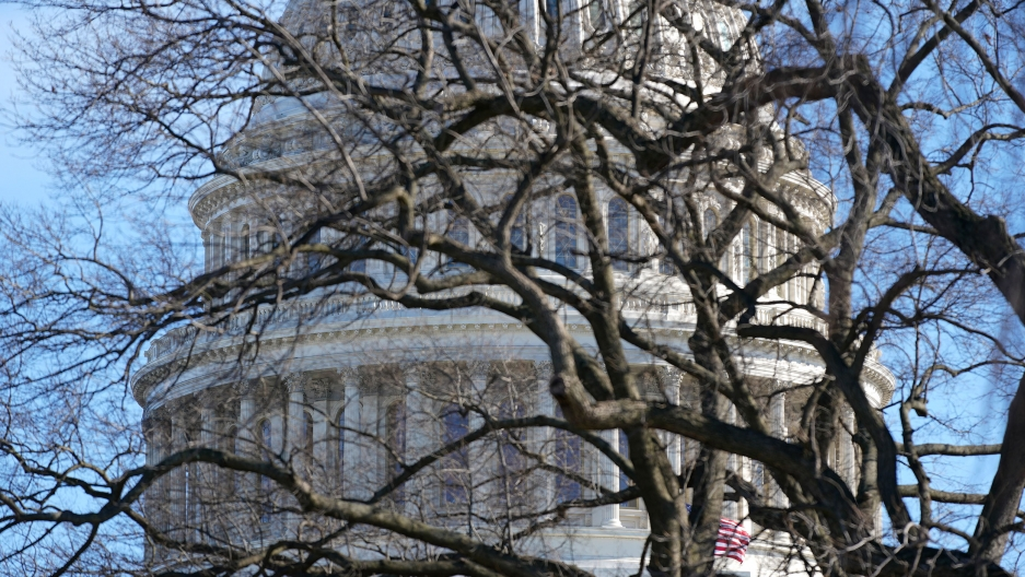 The stone facade of the US Capitol dome is shown in the distance through the branches of a tree without leaves.