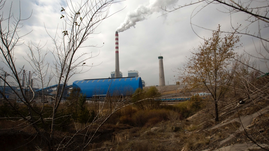 A smokestack burns in the distance of a rugged area with dried leaves and grass.
