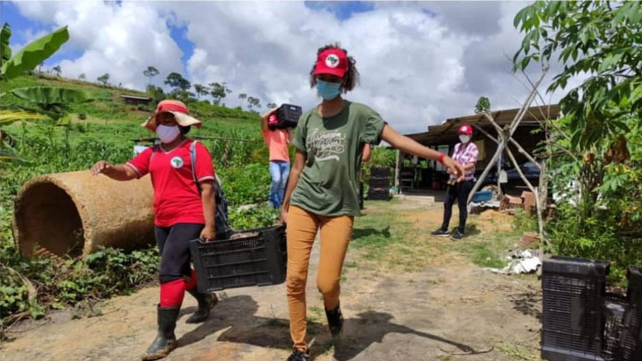 Landless Workers' Movement farmers gather food to distribute to poor communities.