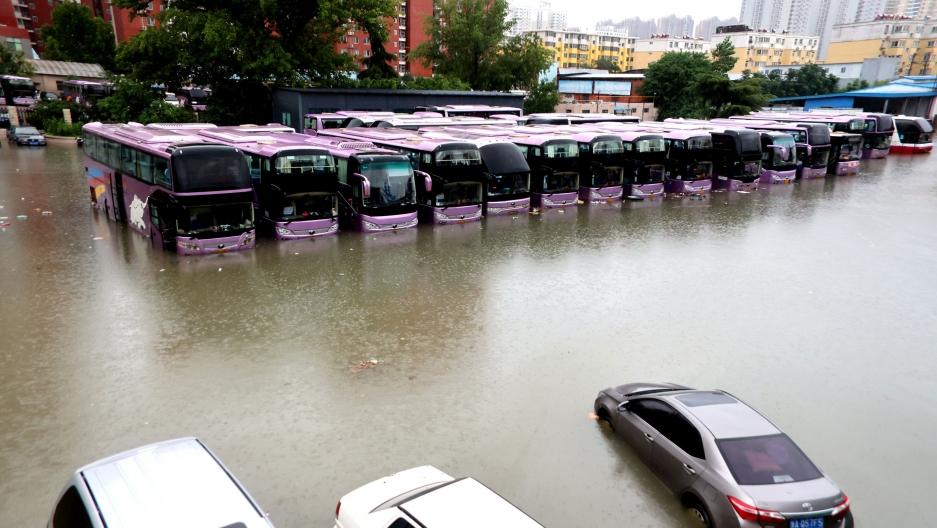 A row of more than a dozen purple buses are shown partially submerged by flood water.