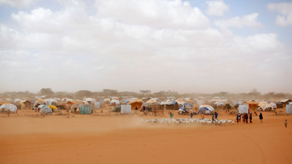A large number of tents and other shelters are show in the distance with a group of people herding animals in the nearground.