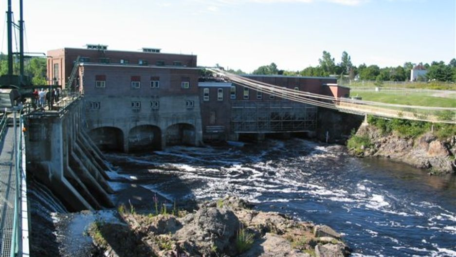 Fish Win: Maine About-Face Lets Alewives Return to Canada